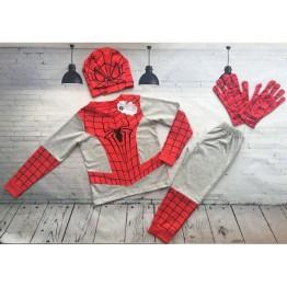 Bộ nhện dài xám